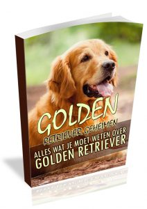 Golden retriever geheimen